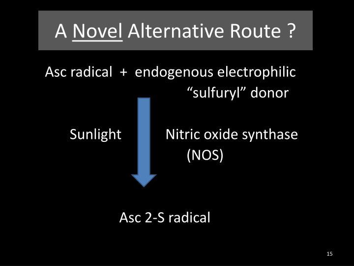 A Novel Alternative Route ?