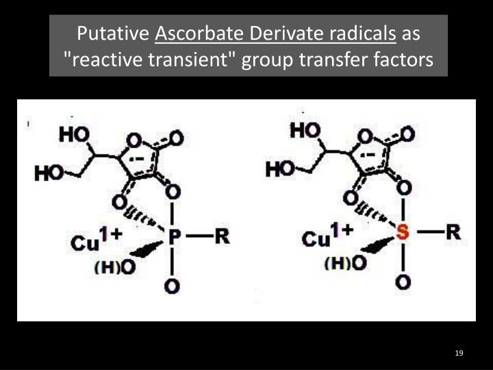 Putative Ascorbate Derivate radicals as