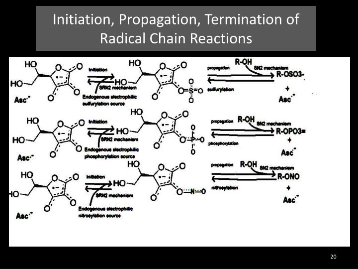 Initiation, Propagation, Termination of