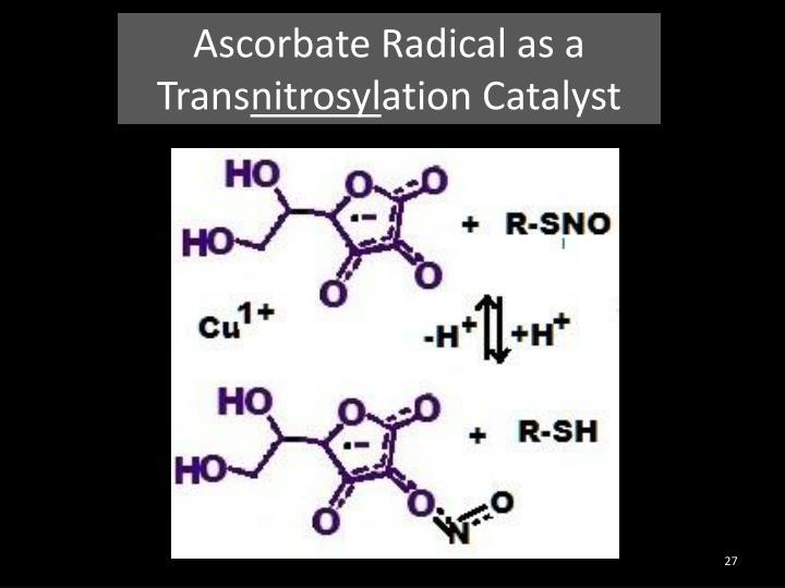 Ascorbate Radical as a