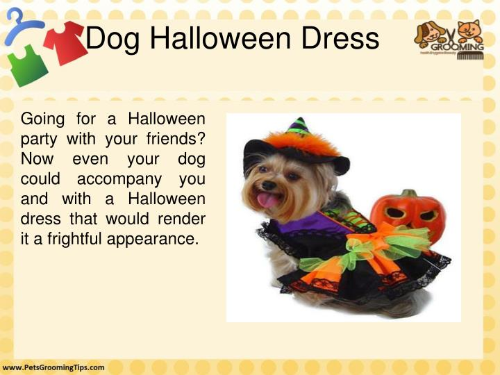 Dog Halloween Dress