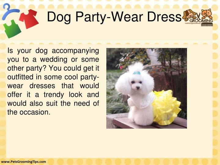 Dog Party-Wear Dress
