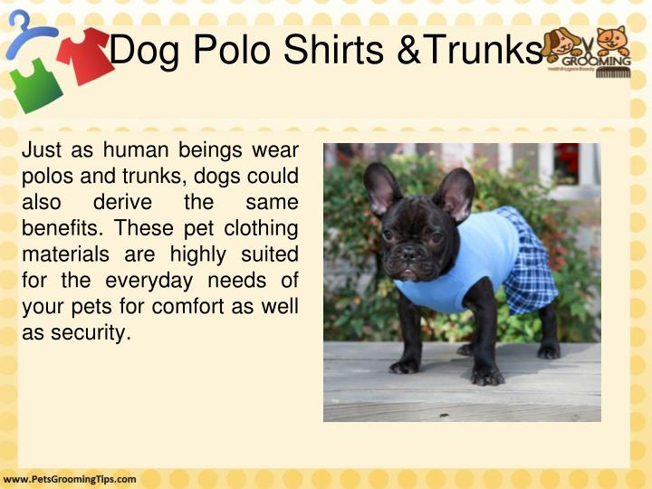 Dog Polo Shirts &Trunks