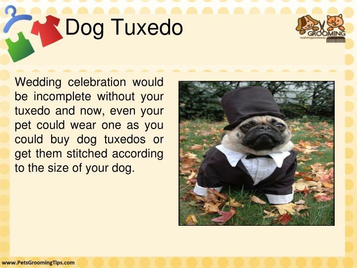 Dog Tuxedo