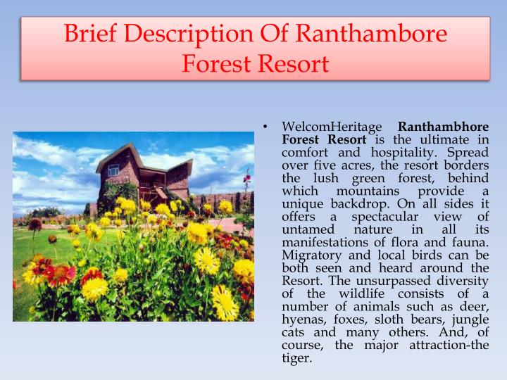 Brief description of ranthambore forest resort