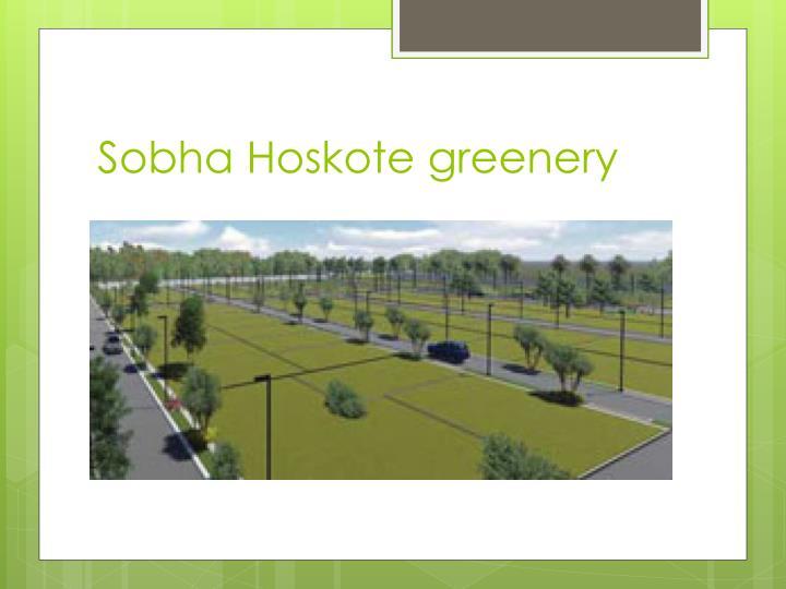 Sobha Hoskote greenery