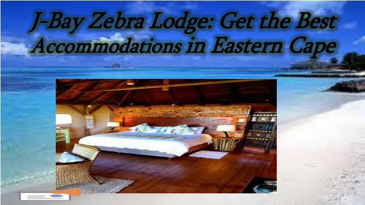 J bay zebra lodge get the best accommodations in eastern cape
