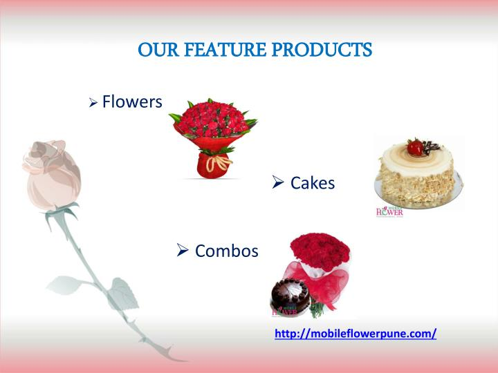 OUR FEATURE PRODUCTS