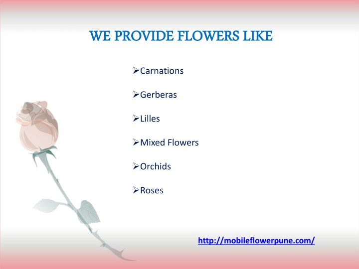 WE PROVIDE FLOWERS LIKE