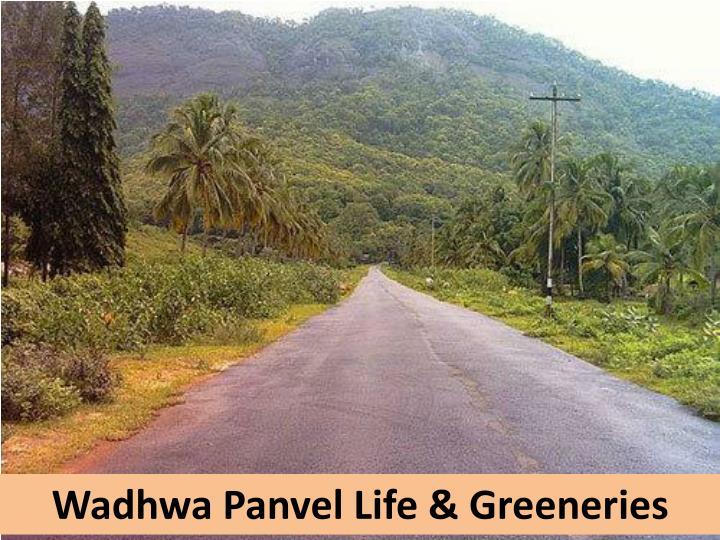 Wadhwa