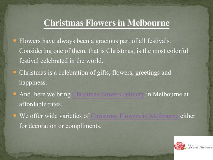 Christmas flowers in melbourne