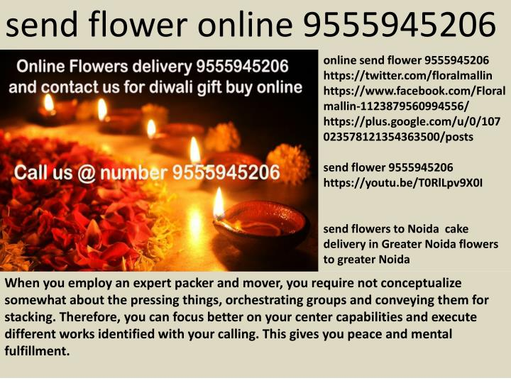 send flower online 9555945206