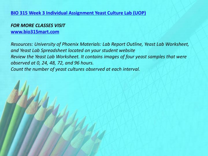 BIO 315 Week 3 Individual Assignment Yeast Culture Lab (UOP)