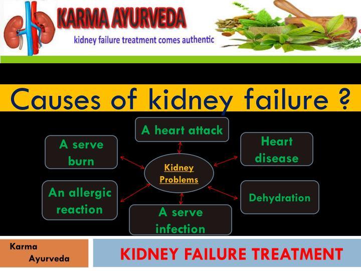 www.karmaayurveda.com