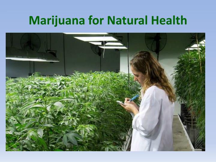 Marijuana for Natural Health