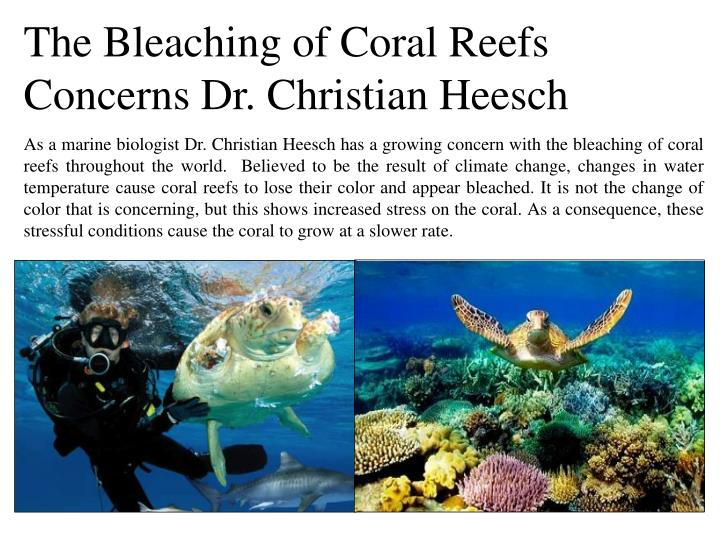 The Bleaching of Coral Reefs Concerns Dr. Christian Heesch