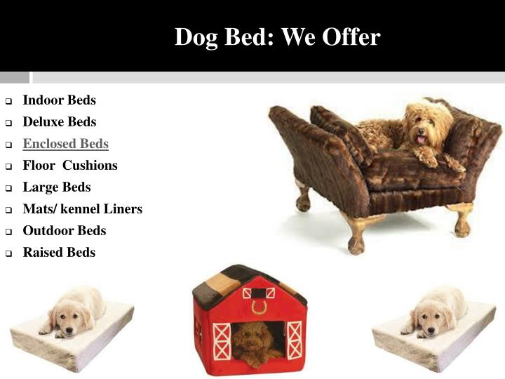 Dog Bed: We Offer