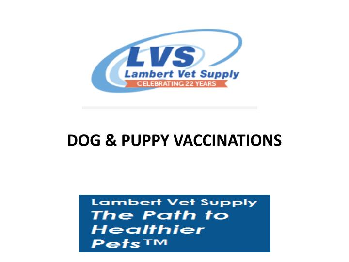 Dog puppy vaccinations