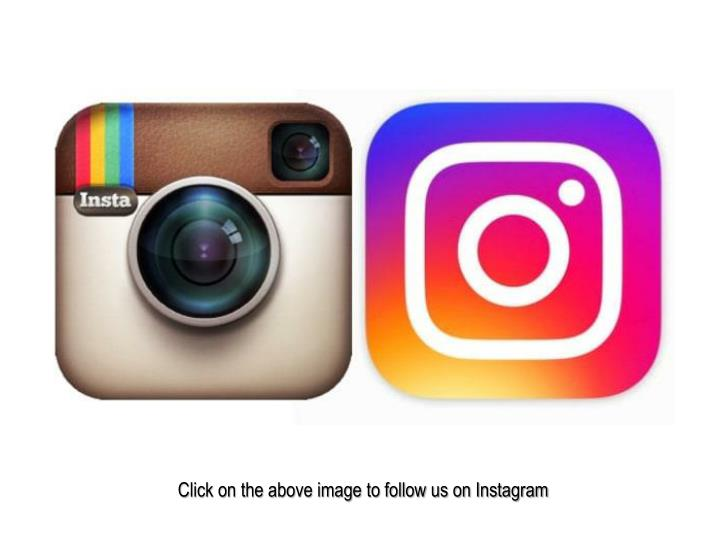 Click on the above image to follow us on Instagram