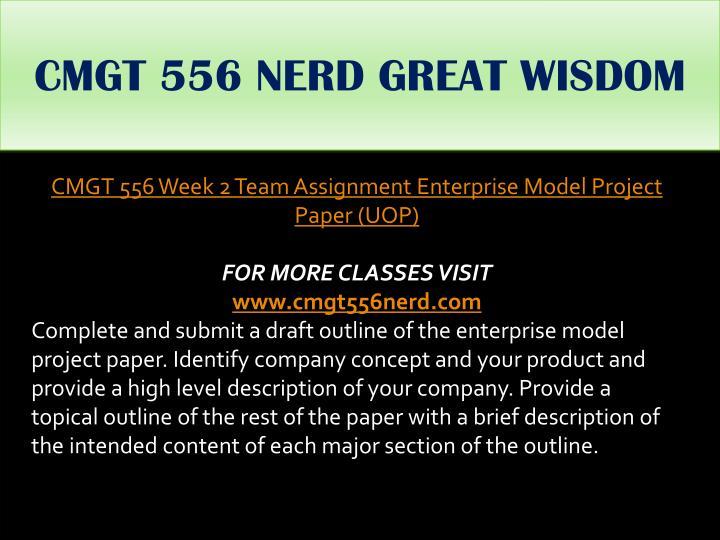 CMGT 556 NERD GREAT WISDOM