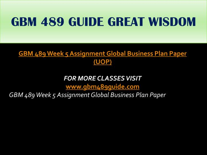 GBM 489 GUIDE GREAT WISDOM