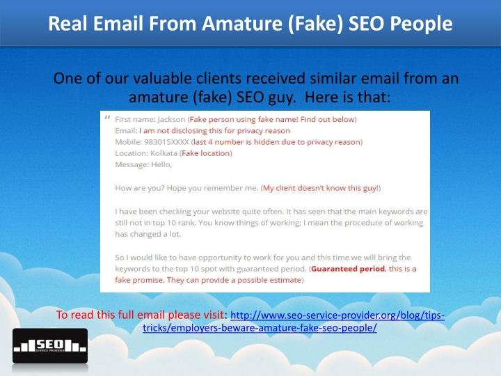 Real Email From Amature (Fake) SEO People