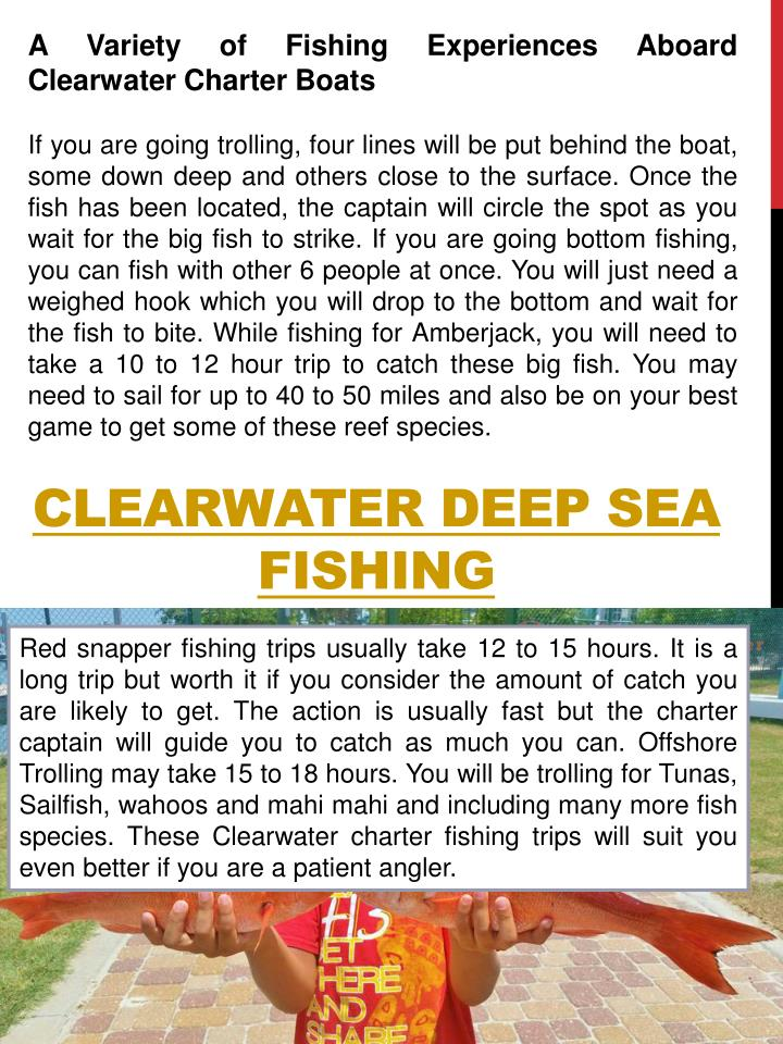 A Variety of Fishing Experiences Aboard Clearwater Charter Boats