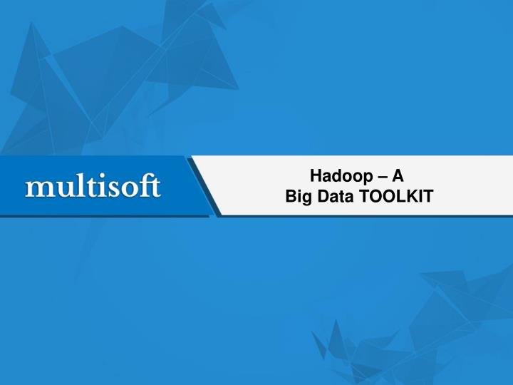 Hadoop a big data toolkit