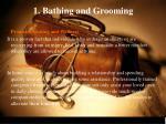 1 bathing and grooming