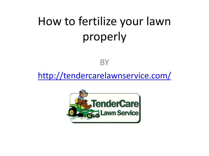 how to fertilize your lawn properly