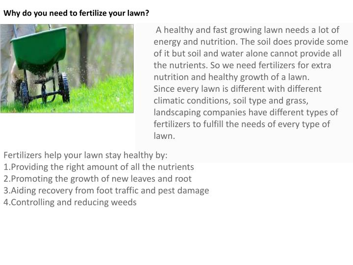 Why do you need to fertilize your lawn?