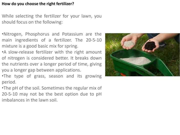 How do you choose the right fertilizer?