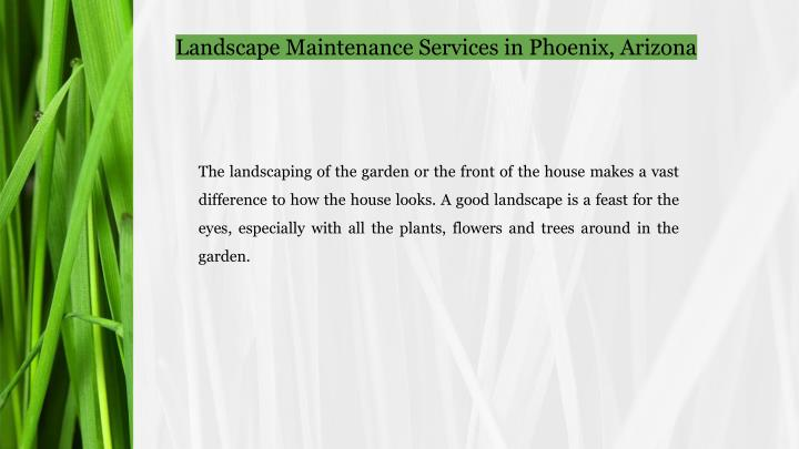 Landscape Maintenance Services in Phoenix, Arizona