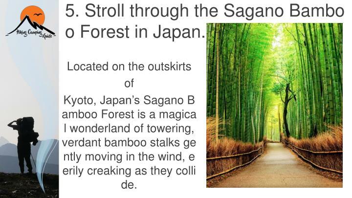 5. Stroll through the