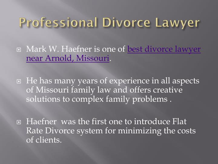 Professional Divorce Lawyer