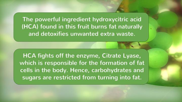 The powerful ingredient hydroxycitric acid (HCA) found in this fruit burns fat naturally and detoxifies unwanted extra waste.