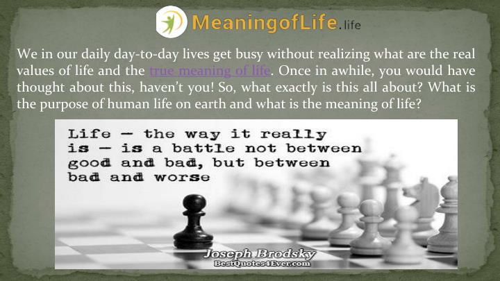 We in our daily day-to-day lives get busy without realizing what are the real values of life and the...