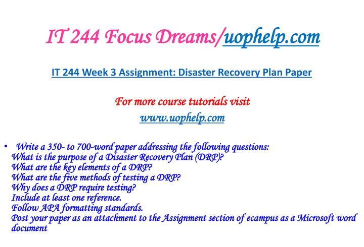 IT 244 Focus Dreams/