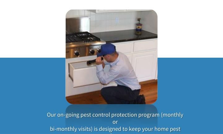 Our on-going pest control protection program (monthly or