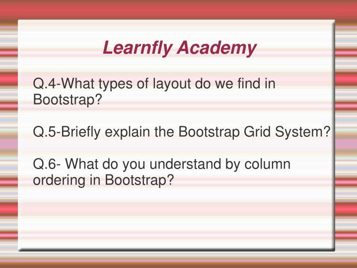Learnfly Academy