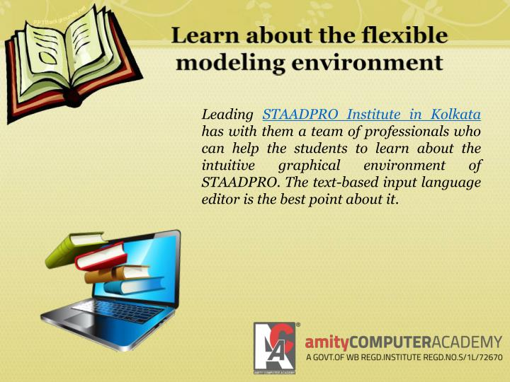 Learn about the flexible modeling environment