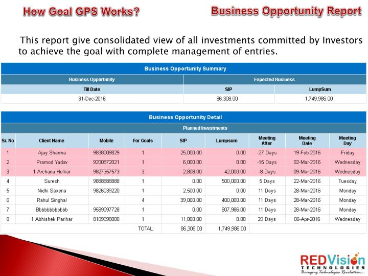 Business Opportunity Report