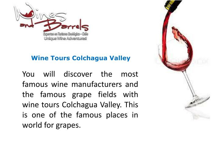 Wine Tours Colchagua Valley