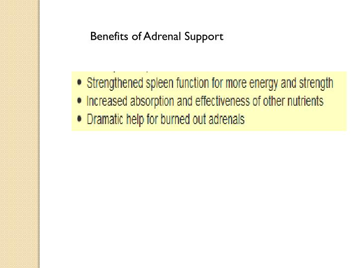 Benefits of Adrenal Support