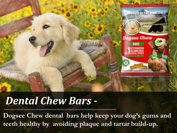 Dental Chew Bars -