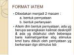 format iatem