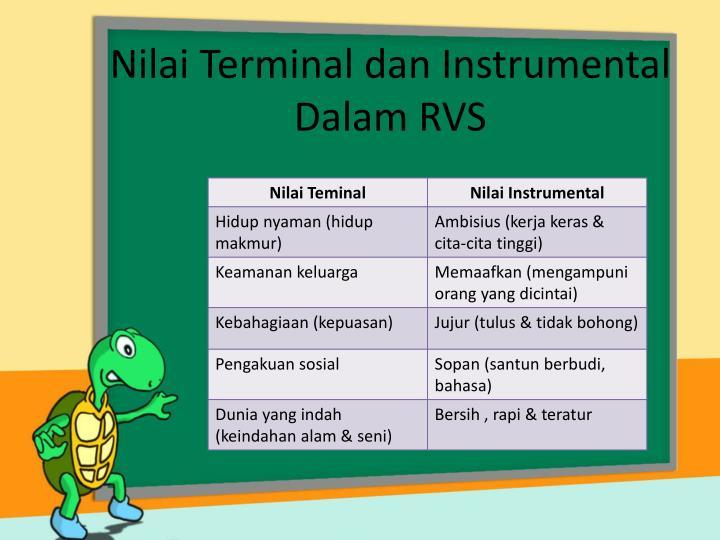 Nilai Terminal dan Instrumental Dalam RVS