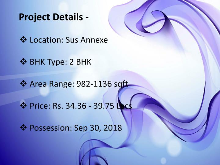 Project Details -
