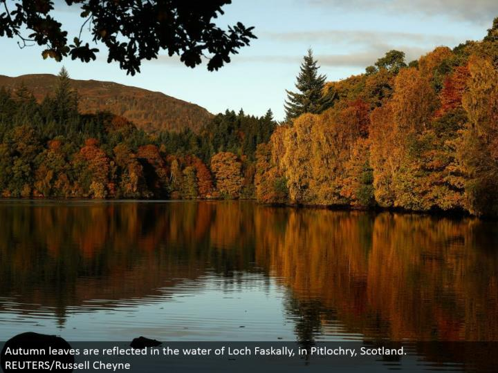 Autumn leaves are reflected in the water of Loch Faskally, in Pitlochry, Scotland. REUTERS/Russell Cheyne