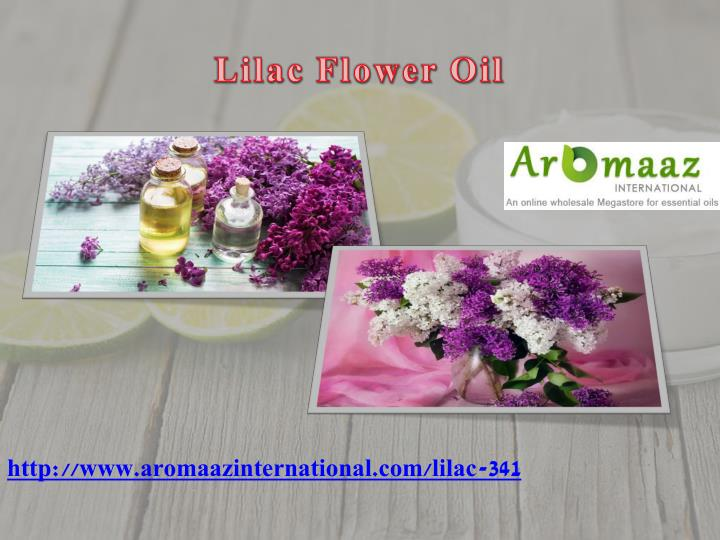 Lilac Flower Oil